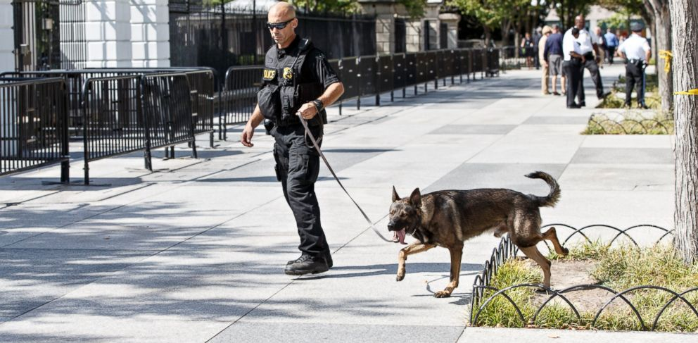 PHOTO: A U.S. Secret Service K-9 sweeps the sidewalk around the White House facing Pennsylvania Avenue, in Washington, Sept. 23, 2014, after protests by anti-war activists who blocked the entrance to the northwest gate.