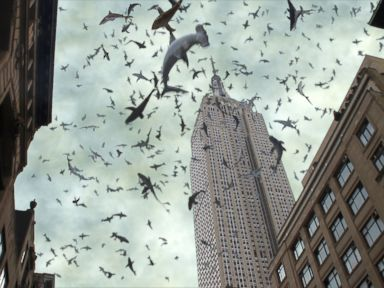 PHOTO: A scene from Sharknado 2: The Second One.