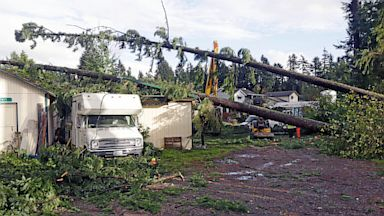 PHOTO: Trees fell on outbuildings and a trailer when a tornado passed through, Sept. 30, 2013 in the Frederickson neighborhood near Puyallup, Wash.