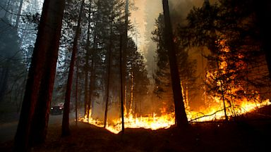 PHOTO: Fire rages out of control in California