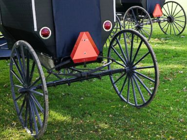 What? Amish Buggy Suspected in Hit-and-Run