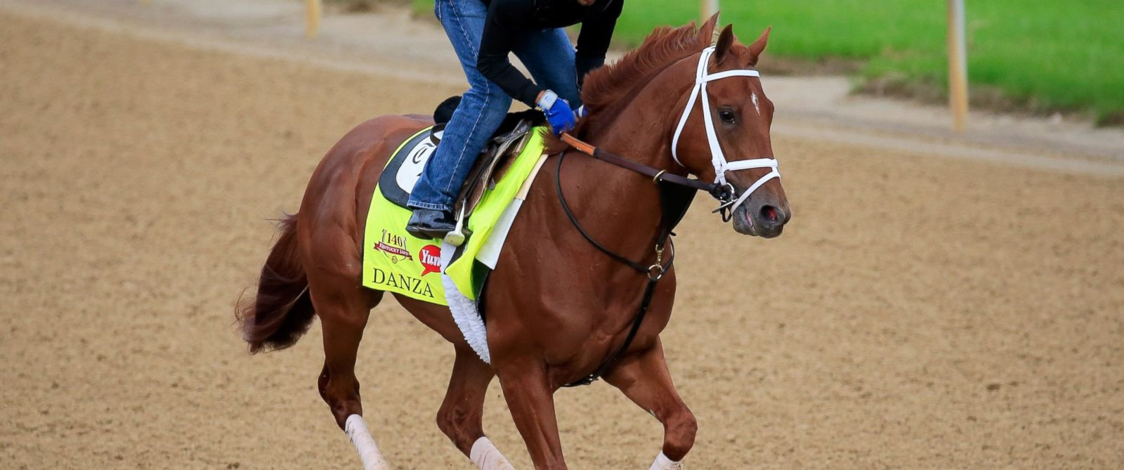 PHOTO: Danza ridden by Ezequiel Perez goes over the track during the morning exercise session in preparation for the 140th Kentucky Derby at Churchill Downs on April 30, 2014 in Louisville, Kentucky.