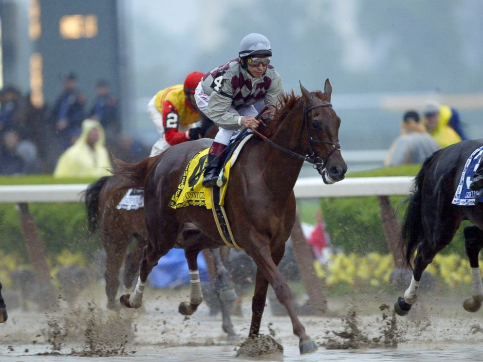 PHOTO: Funny Cide runs down the front stretch on his way toward finishing third during the 135th Belmont Stakes, June 7, 2003, at Belmont Park in Elmont, New York.