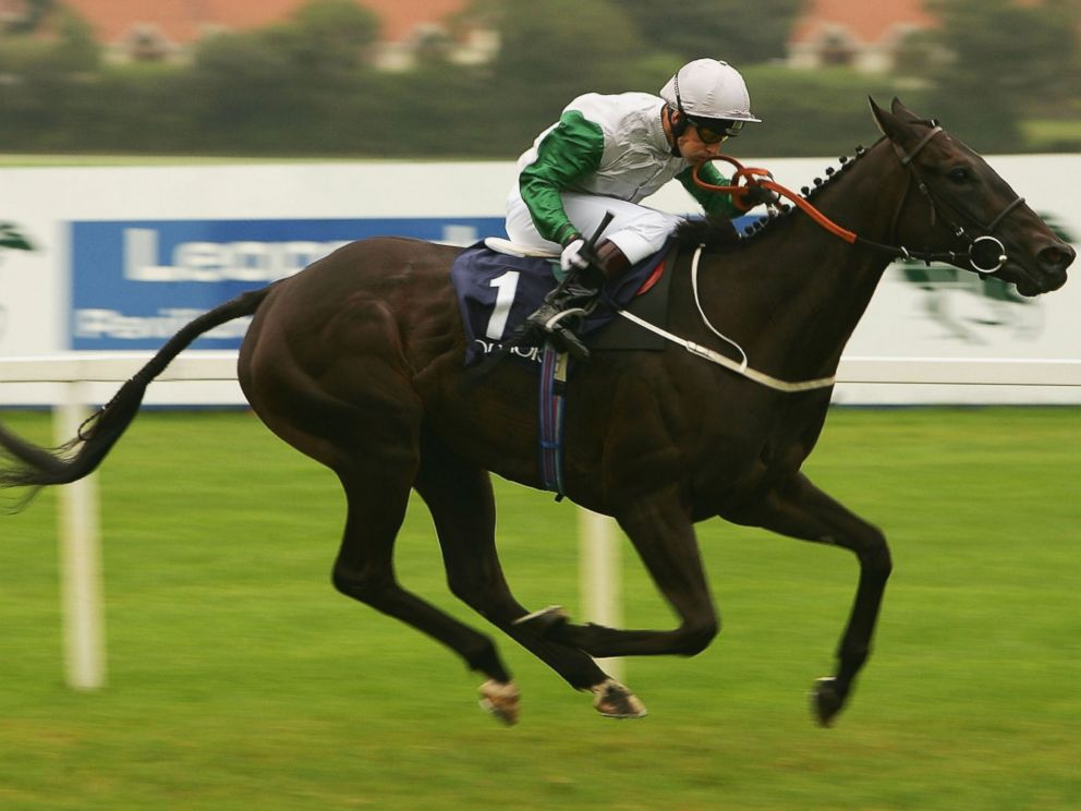 PHOTO: Kevin Darley and Attraction land The Coolmore Fusaichi Pegasus Matron Stakes Race run at Leopardstown Racecourse in this Sept. 10, 2005, file photo in Dublin, Ireland.