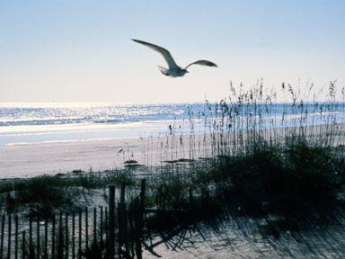 PHOTO: Isle of Palms, South Carolina.