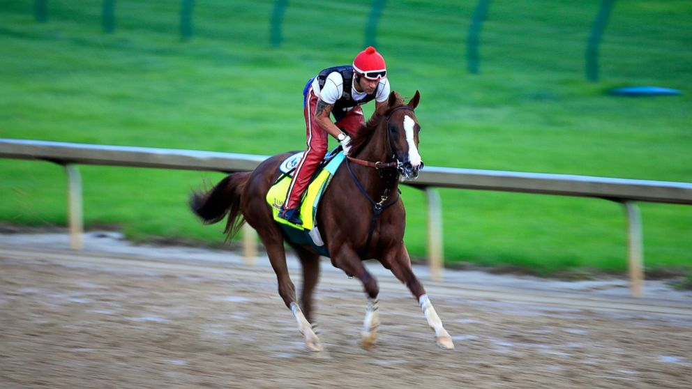 PHTO: California Chrome, ridden by William Delgado, trains on the track during the morning exercise session in preparation for the 140th Kentucky Derby at Churchill Downs in Louisville, Ky., April 30, 2014.