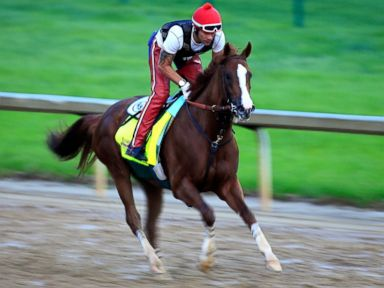 How to Bet the Kentucky Derby: A Beginner's Guide