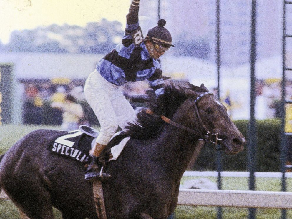 PHOTO: Jockey Ronnie Franklin sits atop of Spectacular Bid during the Preakness Stakes, May 18, 1979, at Pimlico Race Track in Baltimore, Maryland.
