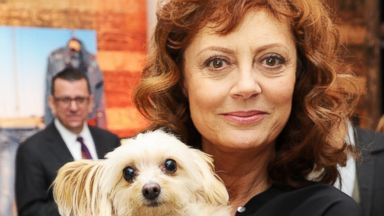 PHOTO: Susan Sarandon at the 2013 Toronto International Film Festival, Sept. 7, 2013 in Toronto.