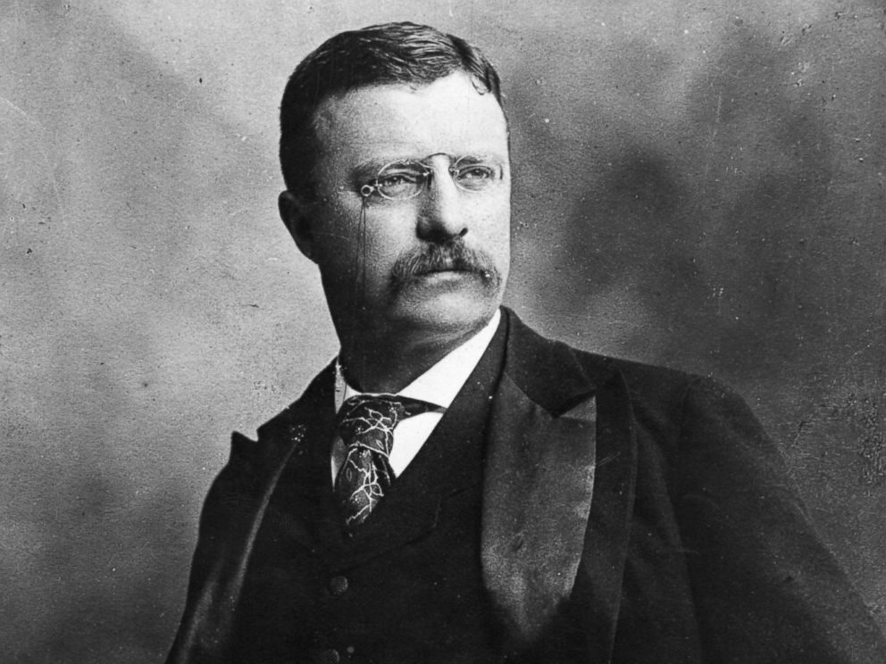 Theodore Roosevelt on Criticizing the President
