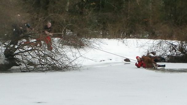 PHOTO: A 3-year-old golden retriever was rescued from a frozen pond in his owner's backyard in North Hampton, N.H.