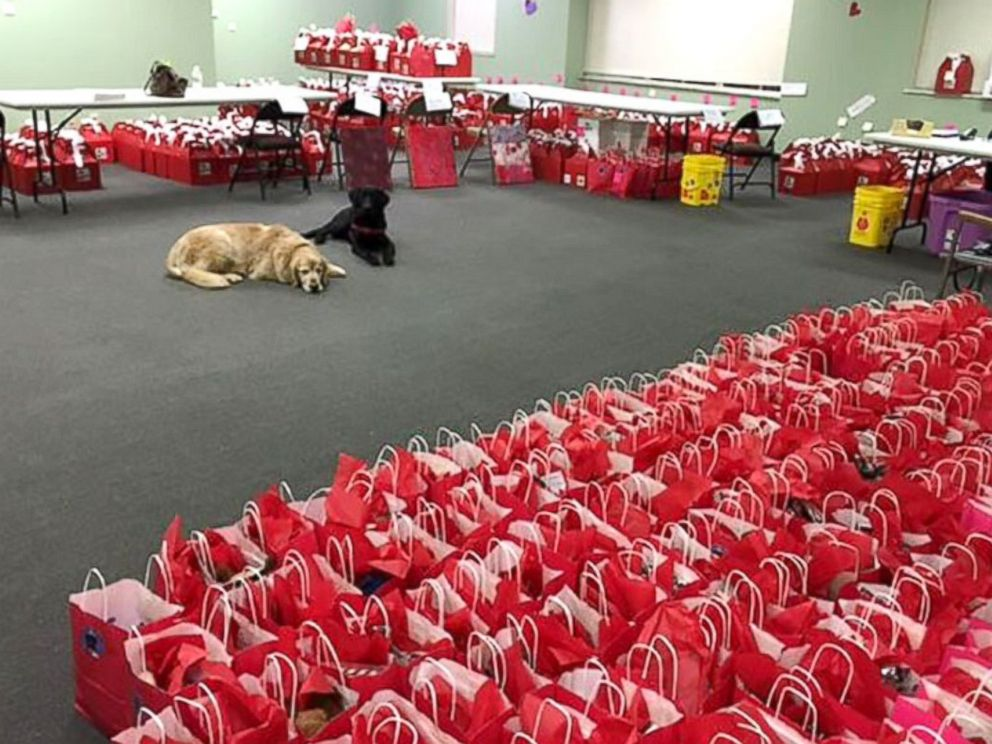 PHOTO: ICANs Puppy Love Valentine Project Has Service Dogs Trained By  Prison Inmates Deliver Valentines