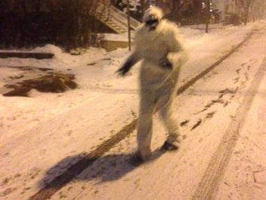 Yeti Seen Prowling the Streets Near Boston