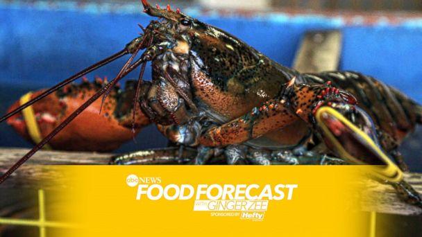 http://a.abcnews.com/images/US/HT_Lobster_MEM_160727_16x9_608.jpg