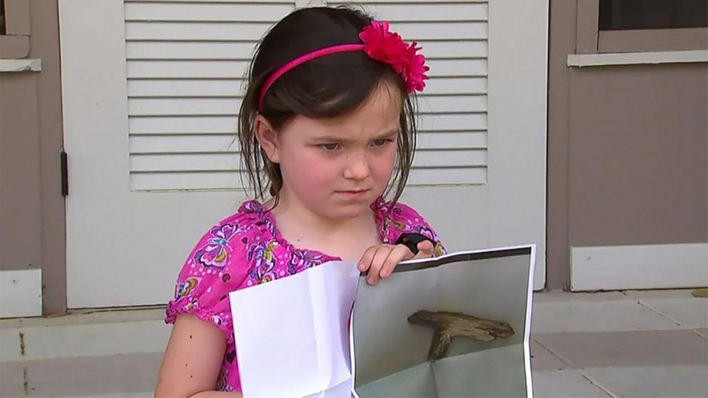 Girl, 5, suspended for stick that resembled a gun