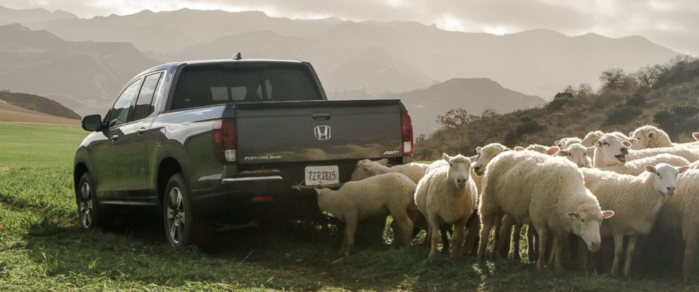 PHOTO: Inside Hondas Super Bowl 50 ad.