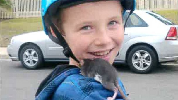 HT aiden rat death petco sk 140225 16x9 608 Family Sues Petco After Calif. Boy, 10, Dies From Rat Bite Fever