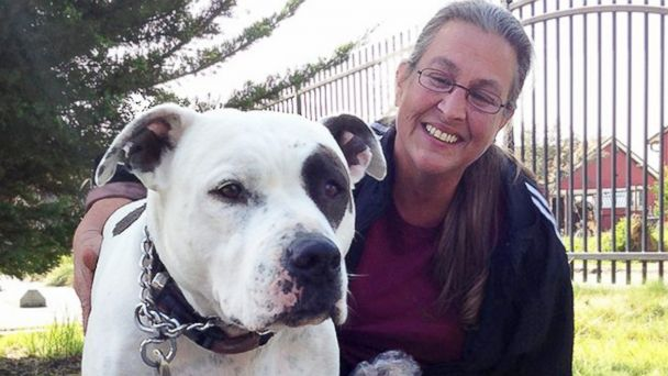 HT carol rocco jef 140218 16x9 608 Family Chooses Homelessness Over Abandoning Pit Bull