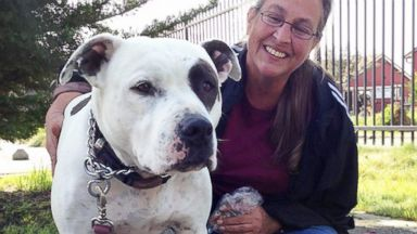 PHOTO: Carol Devia, shown here with her dog Rocco, would rather be homeless than give him up.