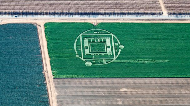 HT crop circle 01 jef 131231 16x9 608 California Crop Circle Sparks UFO Talk