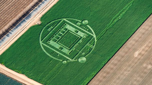 HT crop circle 02 jef 131231 16x9 608 California Crop Circle Sparks UFO Talk