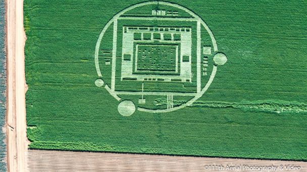 HT crop circle 06 jef 131231 16x9 608 Salinas Crop Circle Destroyed by Landowner