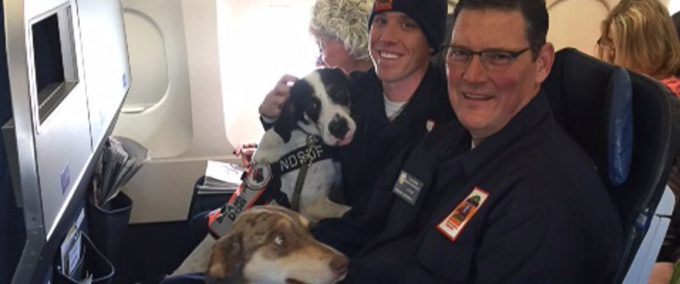 Orange County Fire Authority paramedics Alex Van, right, and Donovan George, left, treated a passenger while on board their flight from Orange County, California, to Houston on Jan. 23, 2015.