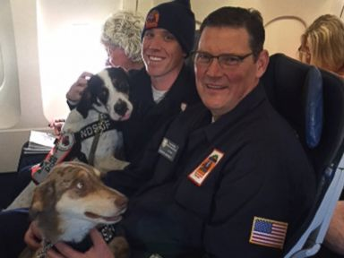 Hero Paramedics Save Man Whose Heart Stopped During Flight