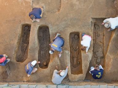 PHOTO: Overview of the chancel burial excavations. Archaeologists (from left to right) Mary Anna Richardson, Danny Schmidt, David Givens, Dan Smith, Don Warmke, Jamie May, Dan Gamble, and Dr. William Kelso.