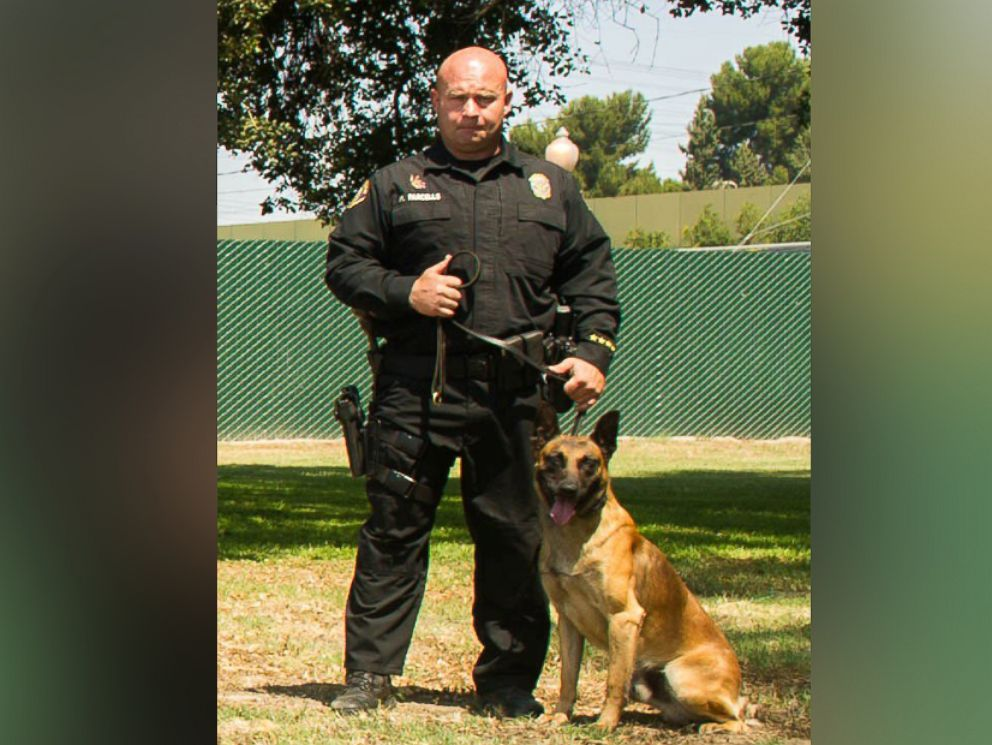 California police officers honor k 9 killed in the line of duty abc news - Police officer in california ...