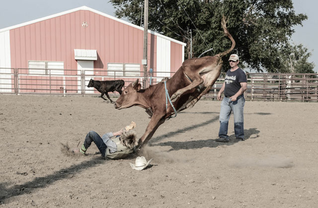 HT kansas life calf rider thg 131001 wblog Water, as Precious as Gold: Life in Parched Western Kansas