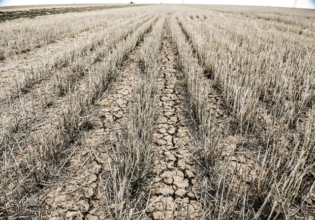 HT kansas life dry lamd 2 pilot thg 131001 wblog Water, as Precious as Gold: Life in Parched Western Kansas