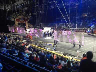 9 Circus Acrobats Injured in Horrifying Collapse