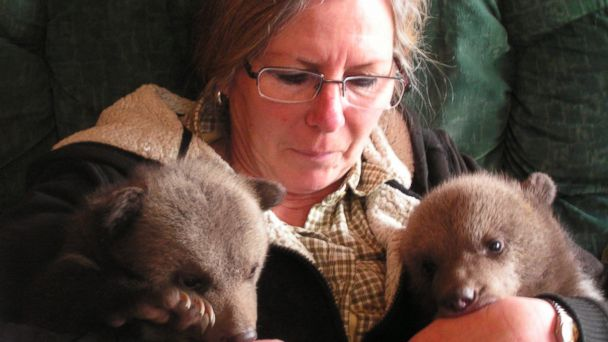 HT shalom1 mar 140326 16x9 608 A Peek Inside the Life of Raising Bear Cubs