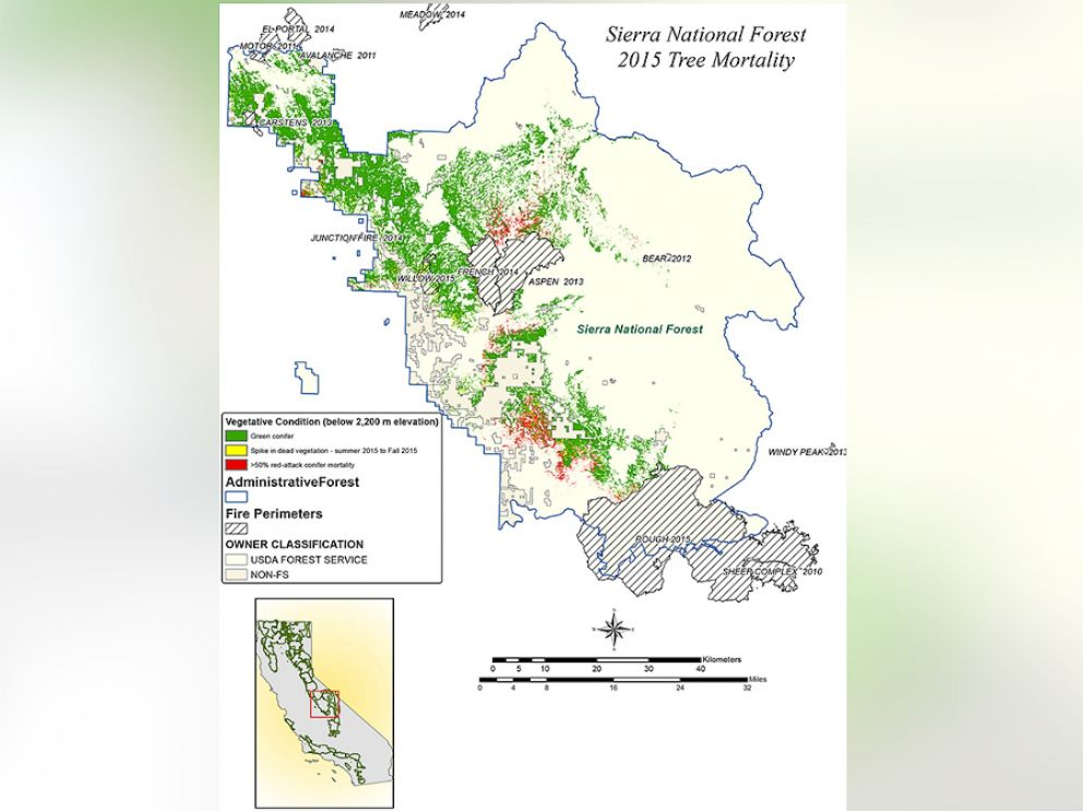PHOTO: NASA AVIRIS data were used to classify the health of trees in Californias Sierra National Forest. Green conifers are shown as green, conifers that were dead in summer 2015 are red, and conifers that were potentially dead in fall 2015 are yellow.