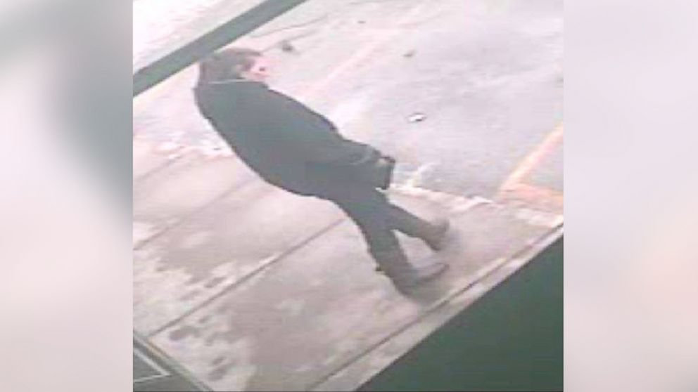 PHOTO: St. Clair County Sheriffâ??s Office have posted this image of the woman of interest in the body found on Allington Road and Fred Moore Highway in China Township on January 30, 2014.