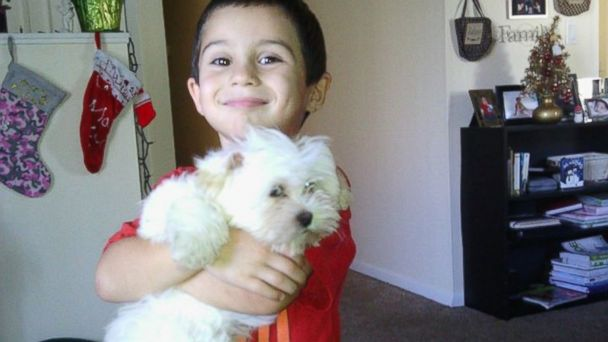 HT tampa dog tk 131225 16x9 608 Search on for Missing Puppy After Grinches Burglarize Tampa Home