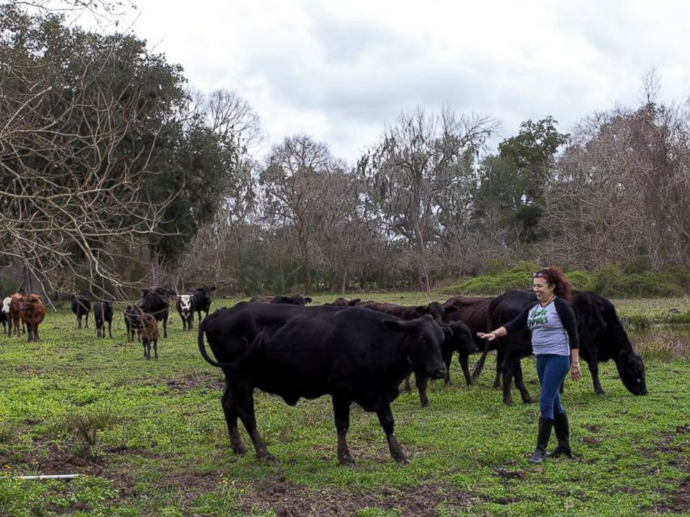 PHOTO: Renee King-Sonnen and her cow, Rowdy.
