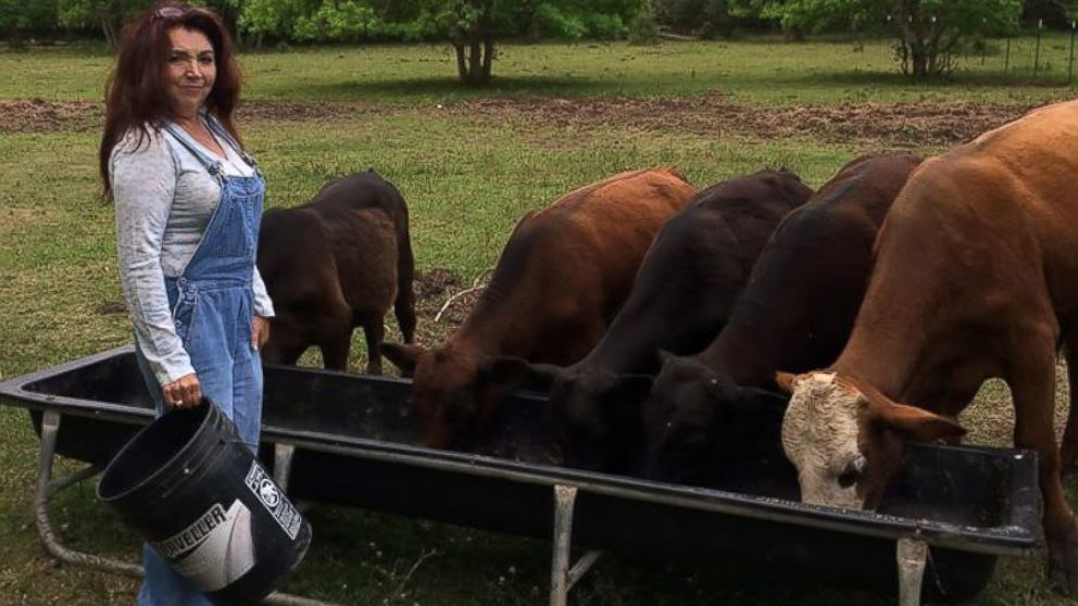 Texas Couple Gives Up Cattle Farming to Be Vegans  ABC News