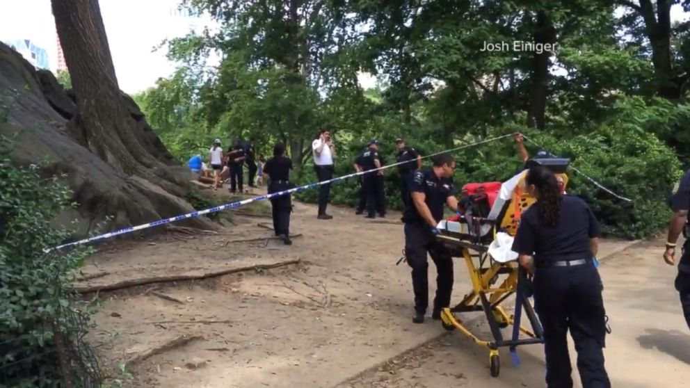 Explosive That Injured Man in New York's Central Park Likely 'an Experiment,' Cops Say