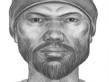 PHOTO: New York City police released a sketch of a witness they are looking to speak to as they investigate the murder of Karina Vetrano in Queens, New York.