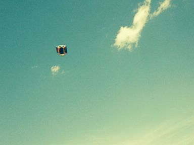 Bounce House Flies 50 Feet Into the Air