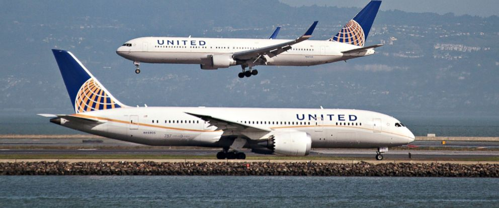 Good Morning America United Airlines : United airlines passenger stung by apparent scorpion on