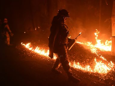 PHOTO: Firefighter Brendon Gorman ignites backfire to stop the Soberanes Fires spread along Palo Colorado Road near Big Sur, California, July 27, 2016.