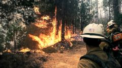 PHOTO: Firefighting crews attend to a forest fire at Sierra National Forest in California.