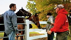 PHOTO: Bob Nevins with retired thoroughbreds and war veterans