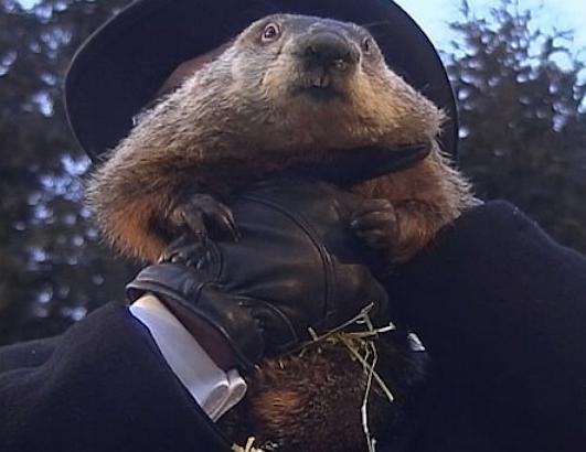 Famous Weather Predicting Groundhogs