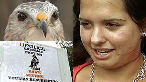 PHOTO Hannah King, a University of Miami sophomore suffered a concussion when attacked by a hawk.