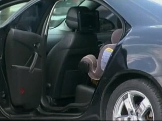 8 Children Die in August After Being Left in Hot Cars