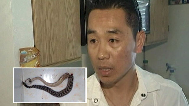 PHOTO: Kenny Ngo, 40, was bit by a rattlesnake in the kitchen of his San Diego condo. Ngo beat the snake with a golf club as his body went numb from the venom, April 9, 2012.